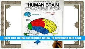 Read Online The Human Brain Coloring Book Concepts Series Marian C Diamond Full