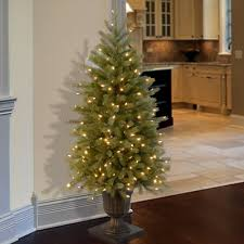 Fraser Fir Artificial Christmas Tree by Christmas Tree In Urn Elegant An Urn Tree In The Foyer Greets