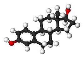 Pumpkin Seeds Zinc Testosterone by 5 Foods That Boost Testosterone