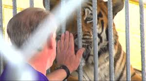 Tigers Pit Animal Rights Orgas Against Truck Stops - YouTube 45 Tiger Truck Stop Trucker Jims Truckin Journey Youtube The Is Here To Stay Vice Kept At Iberville Parish Truck Stop Dies Tony The Update Owner Plans Pursue Another Tiger Stuff For Free Jobyronkuhnercom Kept At For 17 Years Dies But Legal Battle Isn September 28 2015 2 Louisiana Cdllife Abandoned Sign Along I2 Flickr