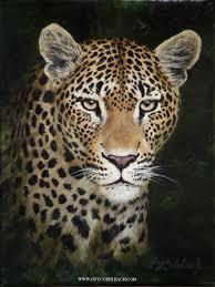 22 best cats images on Pinterest