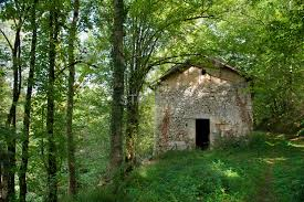 100 House In Forest Image Of Old House In Forest