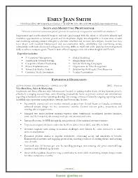 Best Sales Manager Cv Pdf Marketing Resume Samples And Sampl