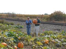 Pumpkin Patch Illinois Chicago by Trails U0026 Rails Winter Season Begins November 11