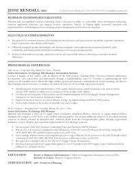 Mis Excel Resume Sample It Manager Business Technology Executive Best In Execut Example