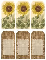 Sunflower Bath Gift Set by Those Who Bring Sunshine
