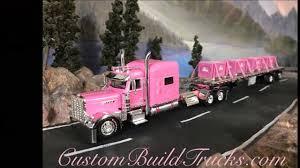 Pink Ribbon Custom Model Peterbilt 389 W/70