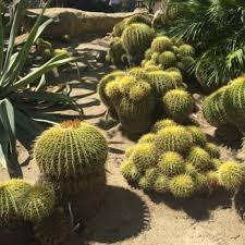 Moorten Botanical Garden 539 s & 114 Reviews Botanical