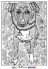 Pin By Barbara On Coloring Dog