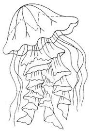 Jellyfish Coloring Page 1 Is A From BookLet Your Children Express Their Imagination When They Color The