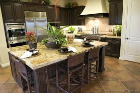 Kitchen Designs Dark Cabinets Floor Tile Pictures Of Kitchens Traditional Wood