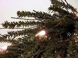 6 Foot Pre Lit Pencil Christmas Tree by Lit Twig Christmas Tree Christmas Lights Decoration