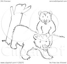 Cartoon Clipart Of Outlined Playful Bear Cubs By A Tree Trunk Black And White Vector Coloring