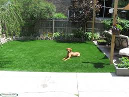 Chicago Synthetic Turf | Artificial Turf | Putting Greens ... Building A Golf Putting Green Hgtv Synthetic Grass Turf Greens Lawn Playgrounds Puttinggreenscom Backyard Photos Neave Landscaping Designs For Custom For Your Using Artificial Tour Faqs Pictures Of Northeast Phoenix Az Photo Gallery Masterscapes Llc Back Yard Installation Sales