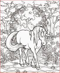 Fantasy Coloring Pages Unicorn