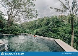100 Bali Infinity Human Swimming In Pool Stock Photo Image Of