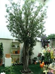 Large Artificial Outdoor Trees Wholesale Mountain King Giant