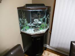 Best 25+ Corner Aquarium Ideas On Pinterest | Fish Tank Wall, In ... I Really Want A Jellyfish Aquarium Home Pinterest Awesome Fish Tank Idea Cool Ideas 6741 The Top 10 Hotel Aquariums Photos Huffpost Diy Barconsole Table Mac Marlborough Tank Stand Alex Gives Up Amusing Experiments 18 Best Fish Images On Aquarium Ideas Diy Clear For Life Hexagon Hayneedle Bar Custom Tanks Ponds Designs For Freshwater Modern 364 And Tropical Ov Cylinder 2