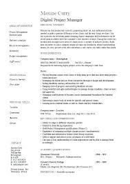 Sample Resume For Program Manager Project Here Are Management Examples
