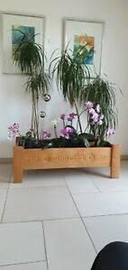 pflanzkübel wohnzimmer ebay kleinanzeigen