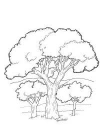Trees And Leaves Simply Simple Coloring Pages Of