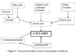 Food Processing Technology Formation Routes Acrylamide