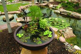 Aquascape Patio Ponds Uk] - 100 Images - Patio Pond Superb Patio ... Beyonc Shares Stunning Behindthescenes Photos From Her Grammys Aquascape For A Traditional Landscape With Pittsford Ny And Aquascape Patio Ponds Uk 100 Images Pond Superb Pond Build In Dingtown Pa Ce Pontz Sons Contractors The Ultimate Backyard Oasis Inc Choosing The Perfect Water Feature Your Yard Features Aquarium Beautify Home With Unique Designs Certified Waterpaw Patio D R Excavating Landscaping Ponds Waterfalls Waters Edge Aquascaping Waterfalls Accsories