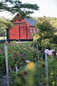 A New Design For A Working Farm - Old House Restoration, Products ... The Barn At Gibbet Hill Good Things By David A Tour Of Turkey With Martha Stewart Celebrating This Life Garden Marthas First House Thirsty Dudes Company Trail Lancaster Conservancy Model Trains Abound The Choo Barnstrasburg Pa Vacation Maybe 601 Best Martha Images On Pinterest Stewart Hill 2277 Turkey Hill Rd Lexington Virginia 24450 Hegarty Peery