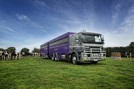OPPORTUNITIES ABOUND FOR LIVESTOCK YOUNG GUN - PACCAR DAF Driving Divisions Prime Inc Truck Driving School Favel Transportation Your Experienced Transportation Professionals Low Turnover At Hunt Flatbed Youtube Midwest Livestock Group Overlooked Video Gem Reveals A Bygone Trucking Era Steves Transport Facebook Express Cattle Truck Jobs Best Image Kusaboshicom Driver Australia Bull Haulin