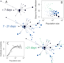 Asymptomatic Viral Shedding Influenza by Contact Heterogeneity Rather Than Transmission Efficiency Limits