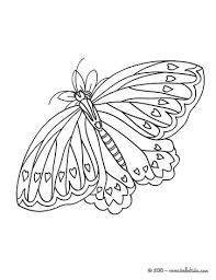 Swallowtail Butterfly Coloring Pages