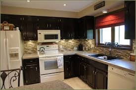 Interesting Kitchen Cabinet Using Java Gel Stain In Black With White Stove And Sink Plus Faucet