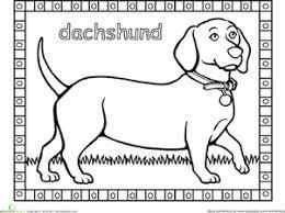 Dog Kindergarten Animals Worksheets Dachshund Coloring Page