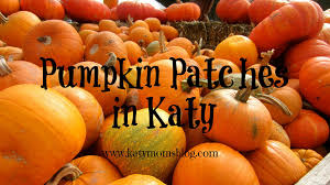 Spring Hope Pumpkin Festival Schedule by Pumpkin Patches In Katy Katy Moms Blog