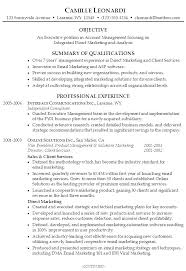 Summaries For Resumes Resume Overview Examples Of A Summary Profile