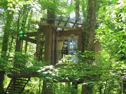 100 Treehouse In Atlanta Airbnb Is The Most Wished For Listing Money