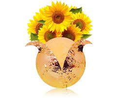 Sunflower Bath Gift Set by Best 4 Bath Bombs With Jewels
