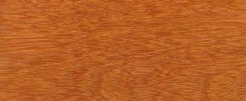 Kempas Wood Flooring Manufacturers by Wood Species For Hardwood Floor Medallions Wood Floor Medallions
