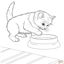 Cute Little Kitten Coloring Page