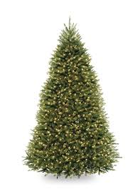 Artificial Pre Lit Douglas Fir Christmas Tree by Amazon Com National Tree 9 Foot Dunhill Fir Tree With 900 Clear