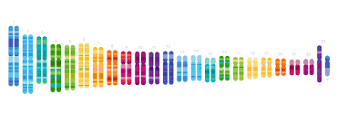 23andMe Discounts | Military, Students & More | ID.me Shop 23andme Health Ancestry Service Personal Genetic Dna Test Including Predispositions Carrier Status Wellness And Trait Reports Dc Batman Runseries Los Angeles Discount Code N8irun Latest Paytm Promo Codes 2019 Nayaseekhon Educators Education Program Traits Kit With Lab Fee How Drug Companies Are Using Your To Make New Medicine Wsj Possible 20 Off 100 Target Coupon Check Mailbox Template Red Blue Gift Card Promo Code Vector Gift Tokyotreat January Spoiler 4 Order Official Travelocity Coupons Codes Discounts Genealogy Bargains For Sunday April 15 2018