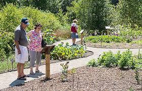 Medicinal garden opens at Matthaei Botanical Gardens