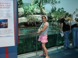 Moody Garden Aquarium Picture of Moody Gardens Hotel Spa