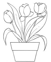 High Quality Free Tulip Flowers Coloring Pages For Kids Printable
