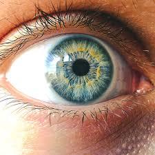 Caruso Eye Care CarusoEyeCare Twitter