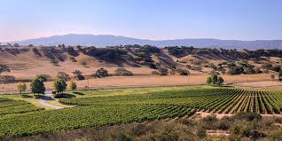 Napa Pumpkin Patch by Forget Napa Head To Santa Barbara Wine Country For Your Next Wine