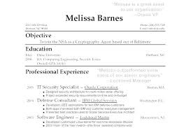 Vp Of It Resume 4 Executive Samples 2015