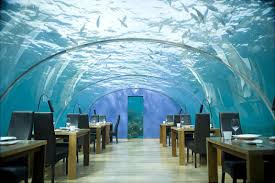 100 Water Discus Hotel In Dubai 10 Beautiful Underwater S The World PakistaniPK
