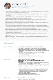 Resume Sample Real Estate Agent
