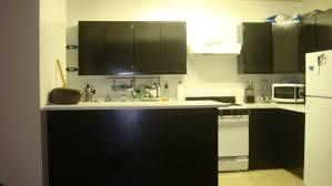Ikea Kitchen Cabinet Doors Australia by Ikea Kitchen Reviews 2017 Planner Login Replacement Cabinet Doors